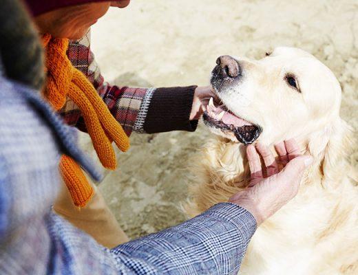 person cuddling dog outside