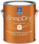 SnapDry Door and Trim Paint