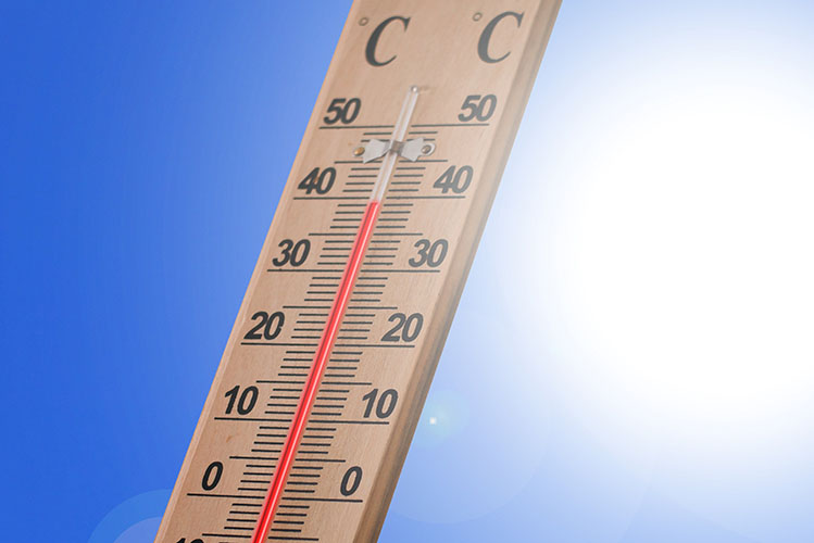 thermometer celsius