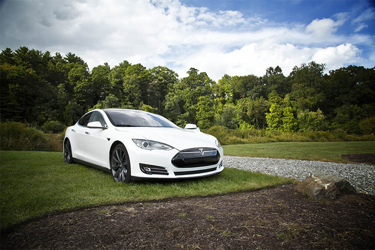 white tesla on grass