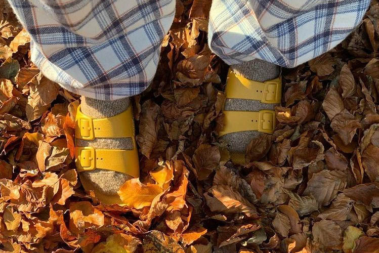 yellow slides and leaves